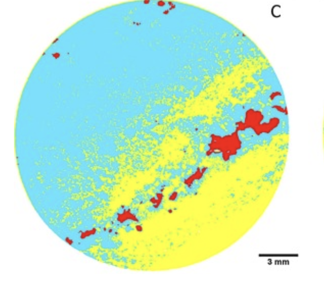 Application of machine learning techniques in mineral phase segmentation for X-ray microcomputed tomography (µCT) data